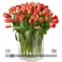 MyBouquet tulipes rouges