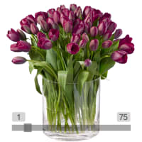MyBouquet Purple Tulips