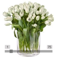 MyBouquet White Tulips