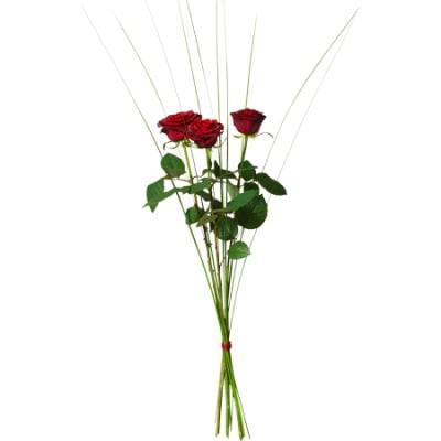 3 rote rosen hier online bestellen lieferung noch gleichen tag. Black Bedroom Furniture Sets. Home Design Ideas