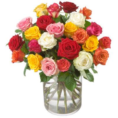 Bouquet De Roses Multicolores 24 Roses Commander Ici Livraison