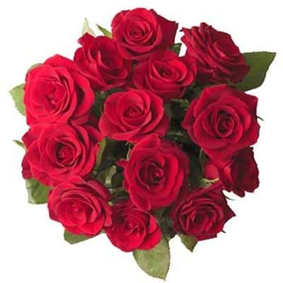 12 rote rosen ohne beiwerk hier online bestellen lieferung noch gleichen tag. Black Bedroom Furniture Sets. Home Design Ideas