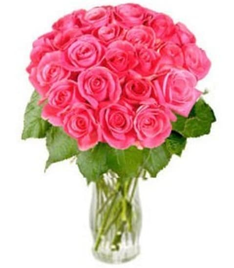 """Bunch of Pink Roses """"Rosy Reveries"""" (without vase)"""
