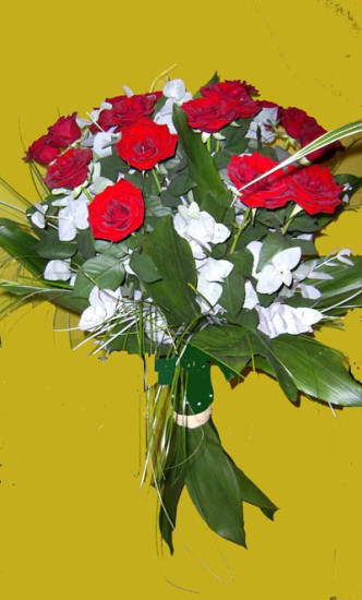 Bouquet de 15 roses rouges longue tiges
