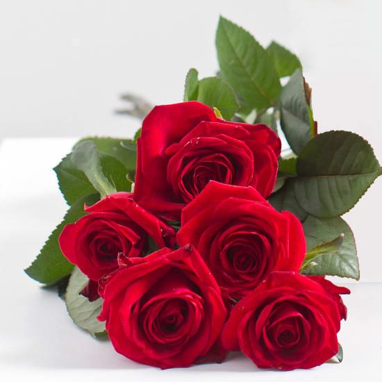 Blumenstrauss aus 5 roten Rosen