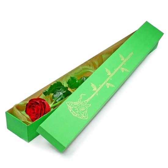 Elegante Rose in einer Box
