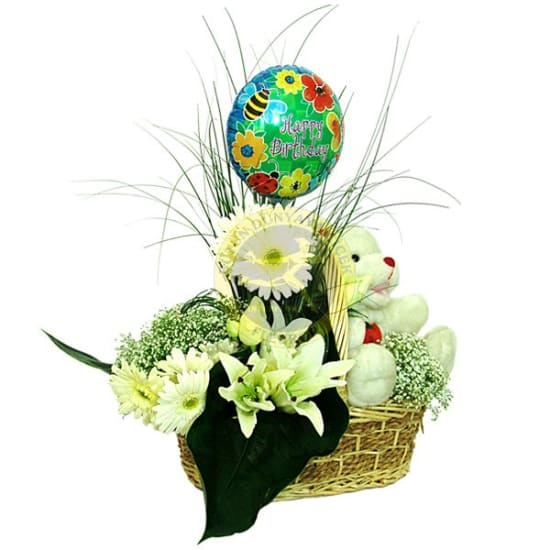 Arrangement for New Born Baby