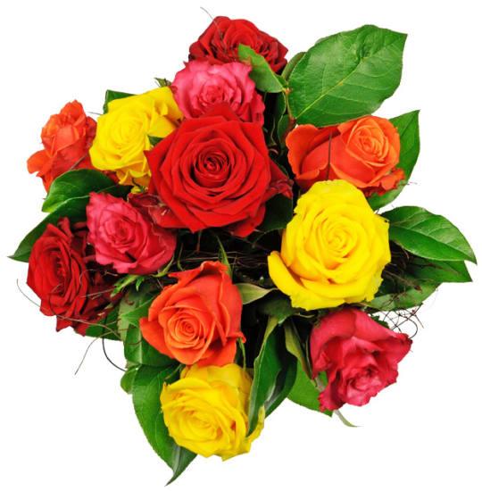 Zuneigung - 12 gemischte Rosen