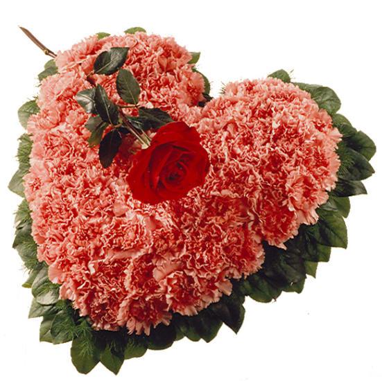 Arrangement: Heart with Carnations