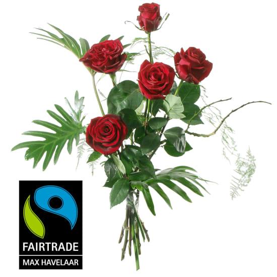 5 rote Fairtrade Max Havelaar-Rosen, mittellang mit Grün
