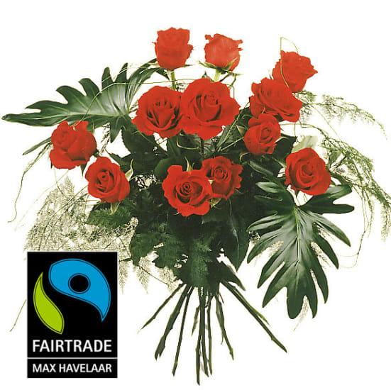 12 rote Fairtrade Max Havelaar-Rosen, mittellang mit Grün