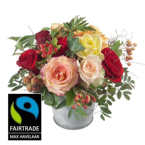 Magie de roses avec roses Fairtrade Max Havelaar à grosses têtes