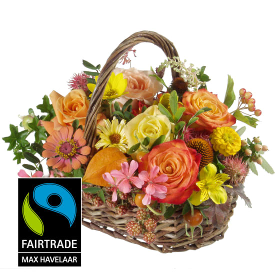 Malerischer Saisonkorb mit grossblumigen Fairtrade Max Havelaar-Rosen
