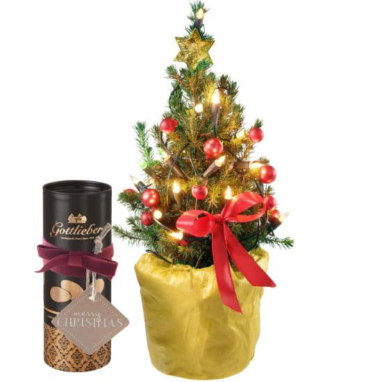 Petit arbre de Noël avec amandes au cacao Gottlieber et étiquette à suspendre «Merry Christmas»