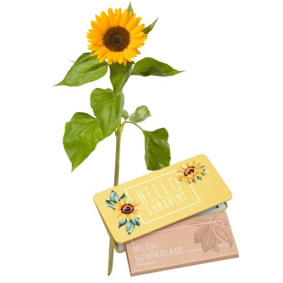 "A Small Sun (1 sunflower) with bar of chocolate ""Hello Sunshine"""