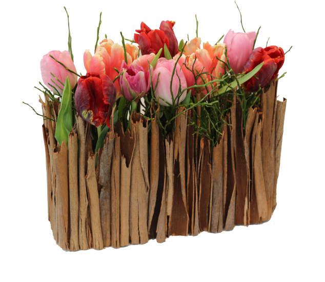 Stilvolles Tulpengärtchen