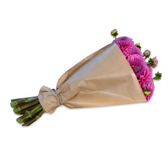 Bundle of deep pink Dahlias