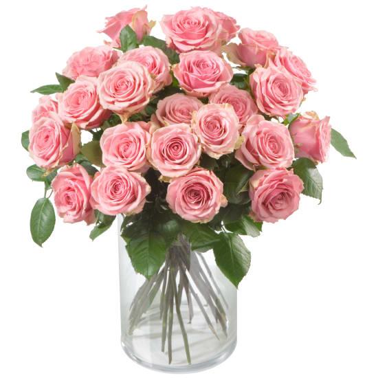 24 roses de couleur rose