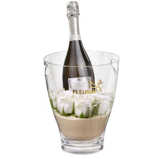 Hello Darling: Prosecco Albino Armani DOC (75 cl) incl. ice bucket