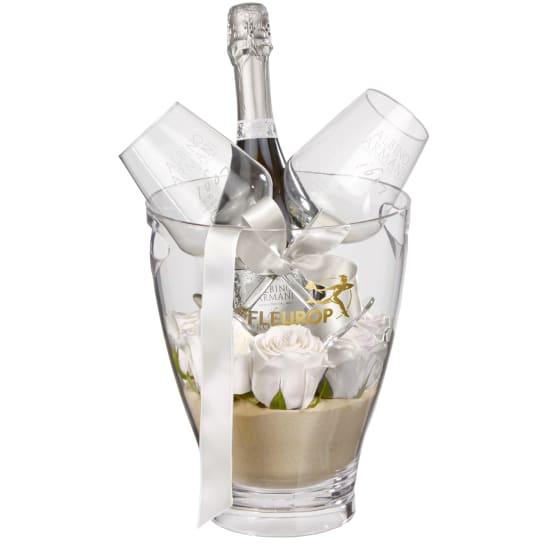 Für den einen Moment: Prosecco Albino Armani DOC (75 cl) inkl. Eiskühler und  zwei Connaisseur-Gläser