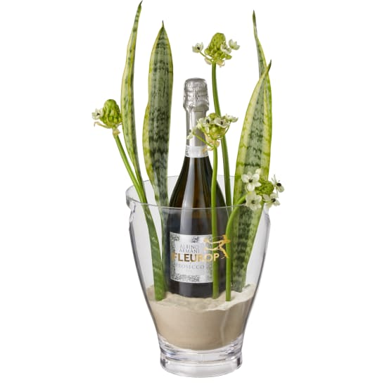 Happy Feelings: Prosecco Albino Armani DOC (75 cl) incl. ice bucket