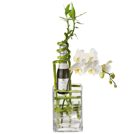 Exquisite Good Luck Charm with Prosecco Albino Armani DOC (20cl)