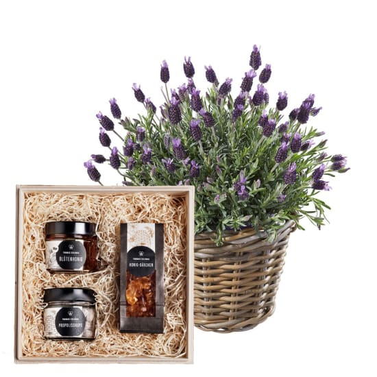 "A basket of lavender with honeybox ""Sweet temptation"""