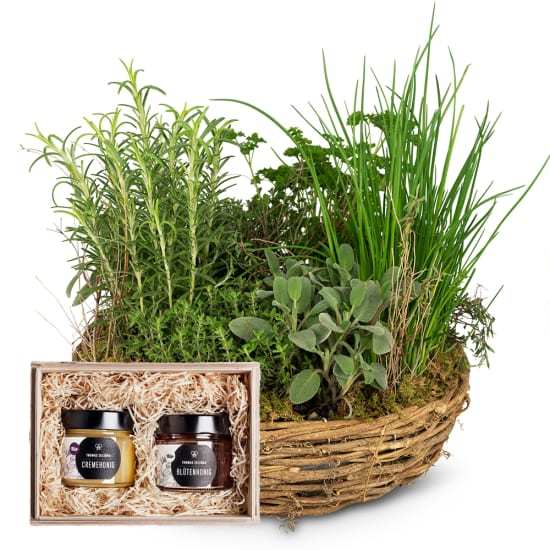 "Little herb garden (planted) with honeybox ""Fine Duo"""
