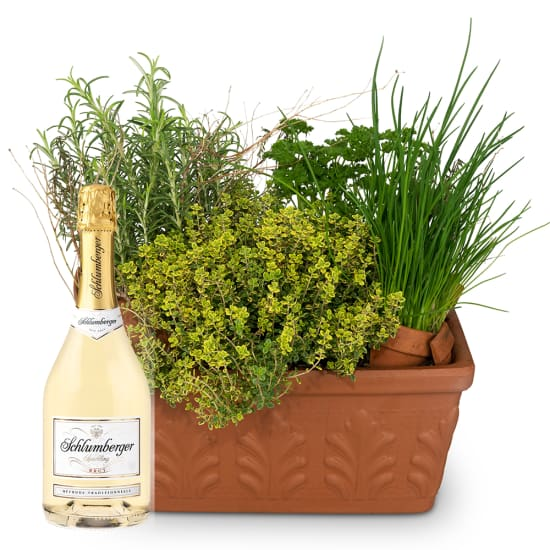 Herb Box (planted) with Schlumberger sparkling wine