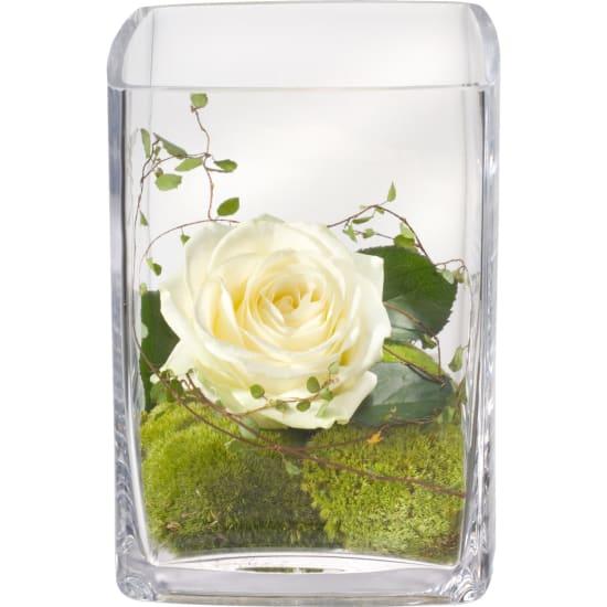 Edles Grüsschen inkl. Vase