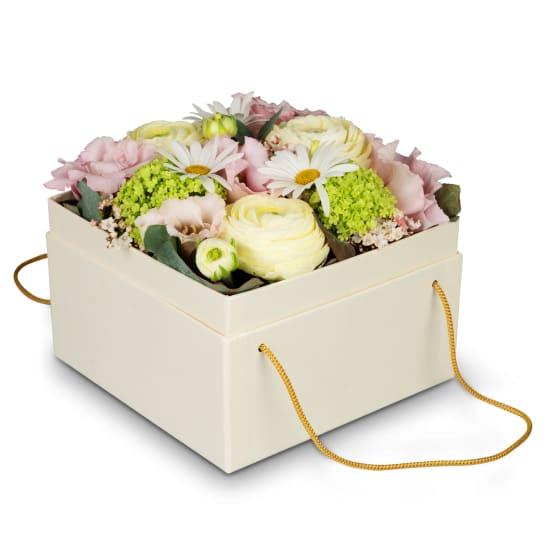 Boîte à fleurs «Madeira» (15 cm)