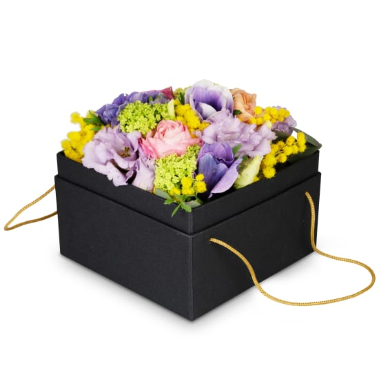Boîte à fleurs «Tokyo» (15 cm)