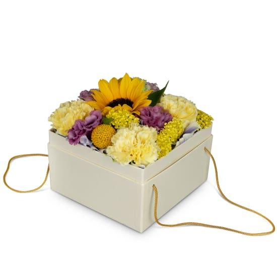 Blumenbox «Arles» (15 cm)