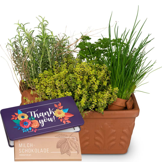 "Herb Box (planted) with bar of chocolate ""Thank you"""