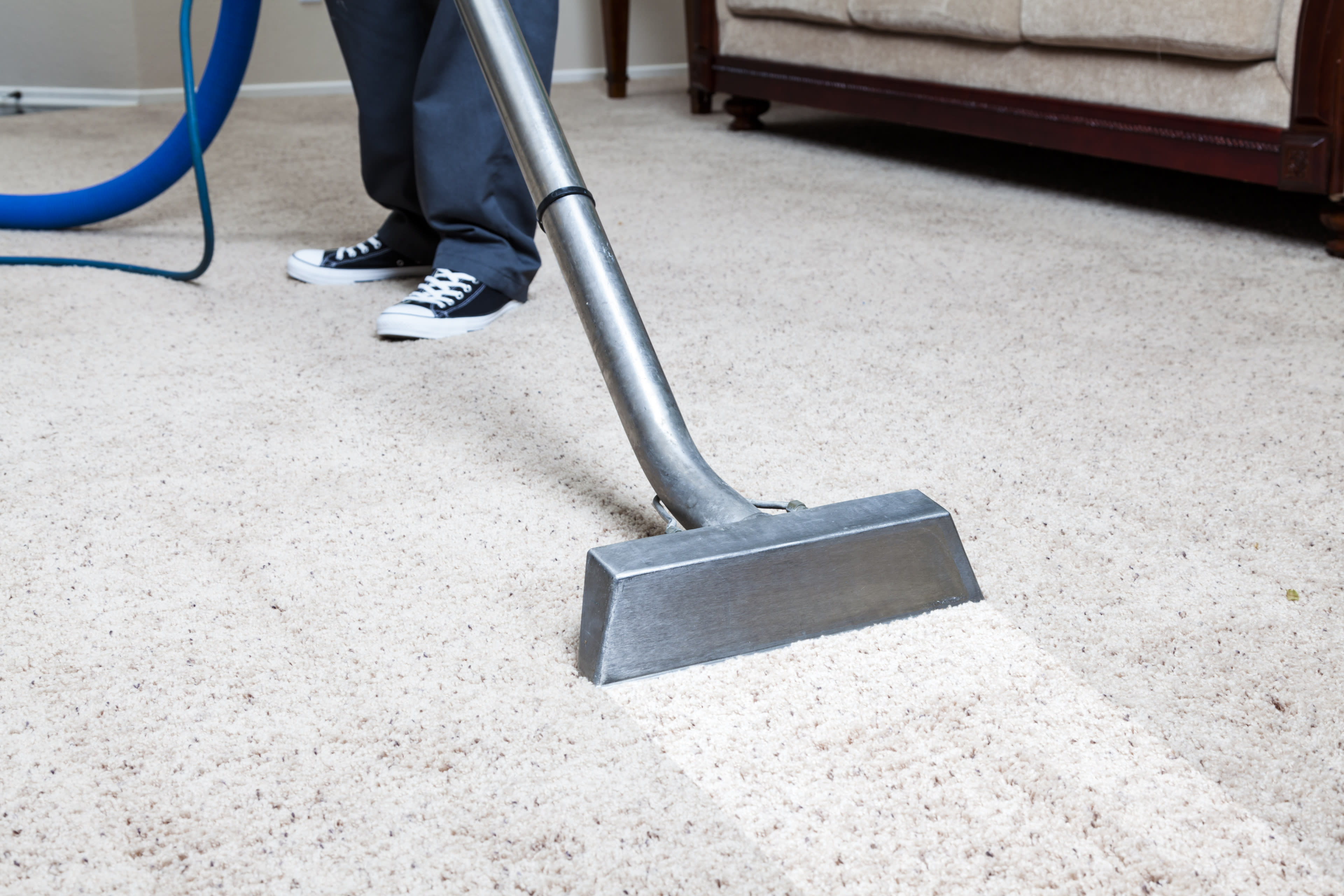 carpet cleaning wall to wall carpet