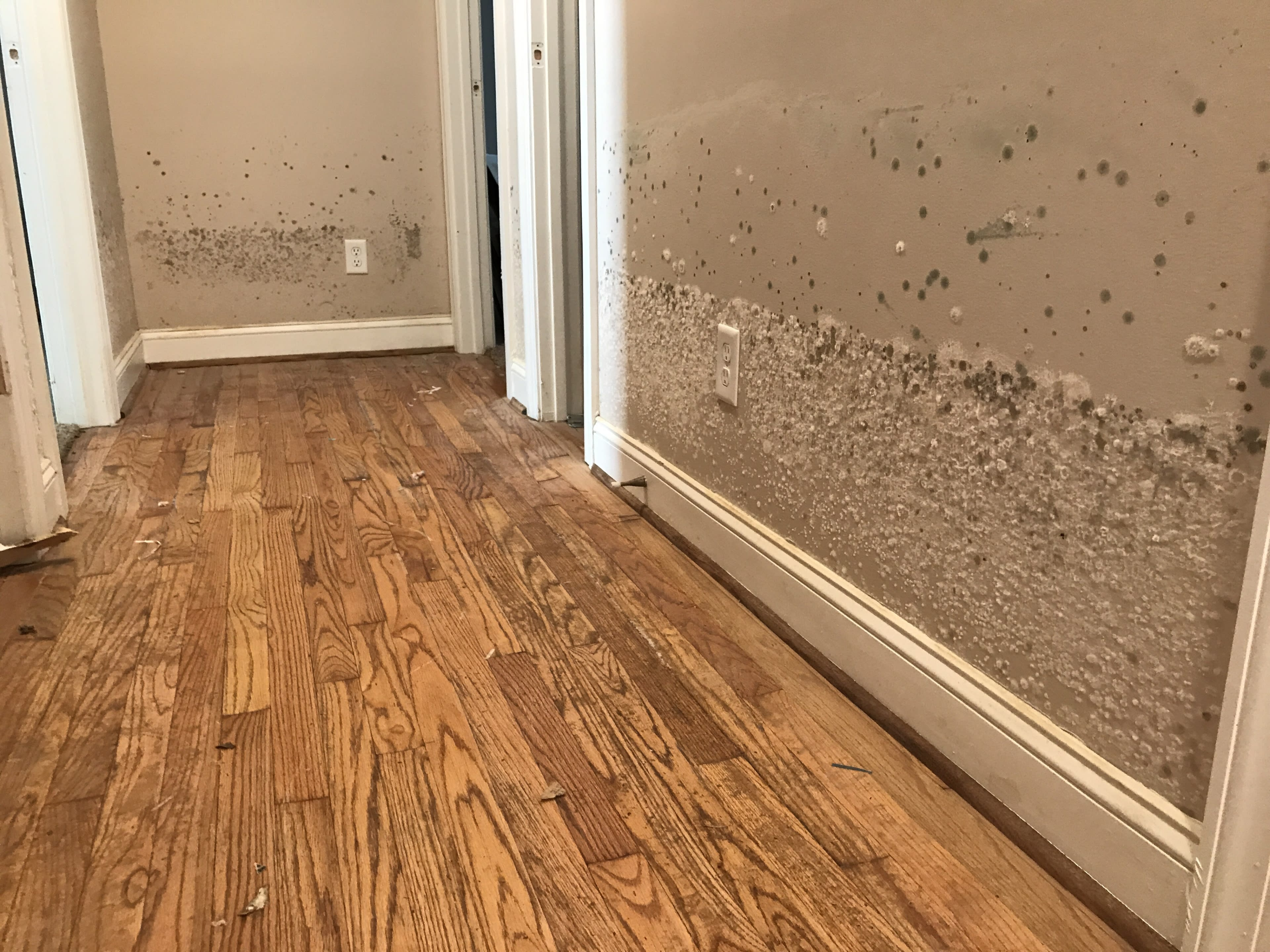 interior-of-a-flood-damaged-home-in-a-residential--UWEY9CB
