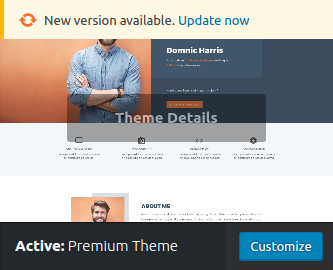 Provide Automatic Updates in WordPress