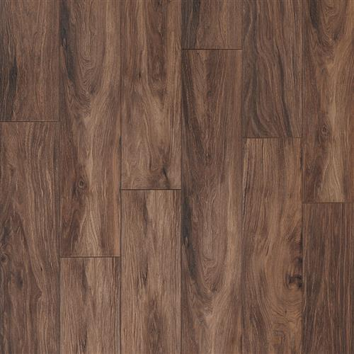 Swatch for Earth flooring product
