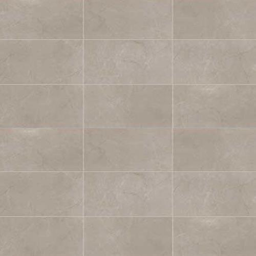 ProductVariant swatch small for Coliseum Gray Matte   24x48 flooring product