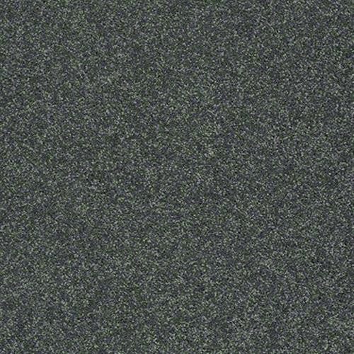 ProductVariant swatch large for Emerald Coast flooring product