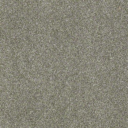 Swatch for Silver Sage flooring product