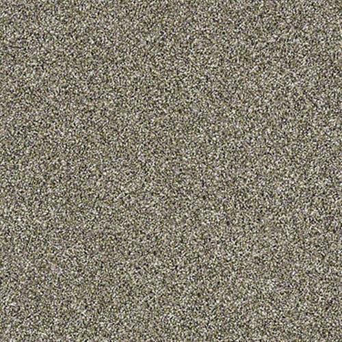 Swatch for Park Trail flooring product
