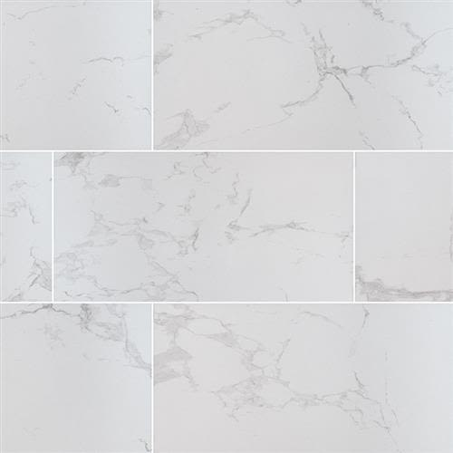 Swatch for Carrara   24x48 Polished flooring product