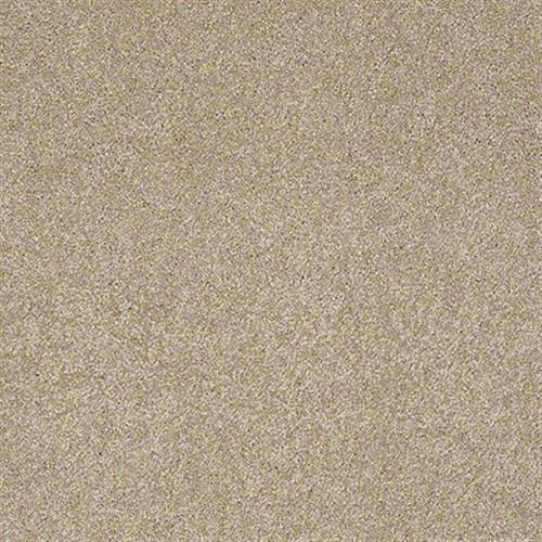 Swatch for Townhouse Taupe flooring product