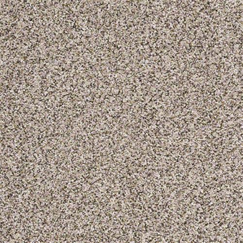Swatch for Nutshell flooring product