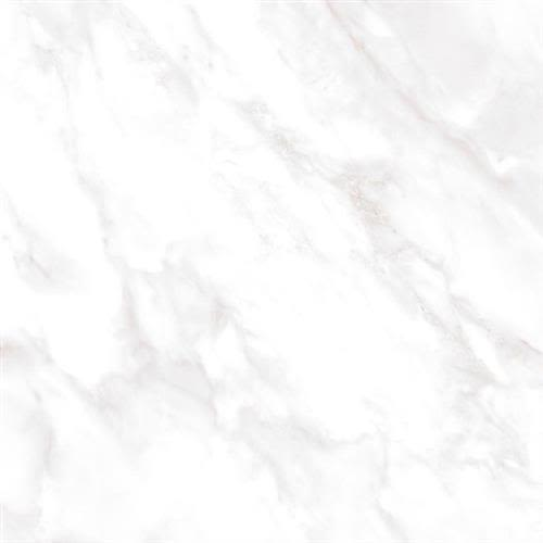 Swatch for Calacata   12x23 Matte flooring product