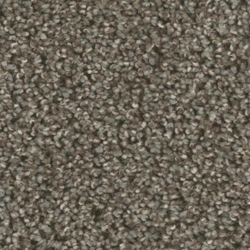 Swatch for Back Road flooring product