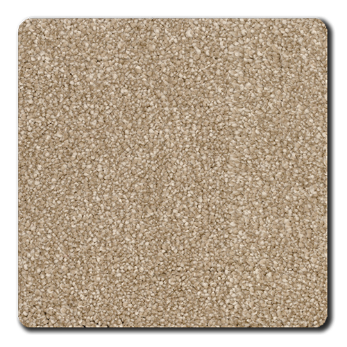 swatch for product variant Mocha
