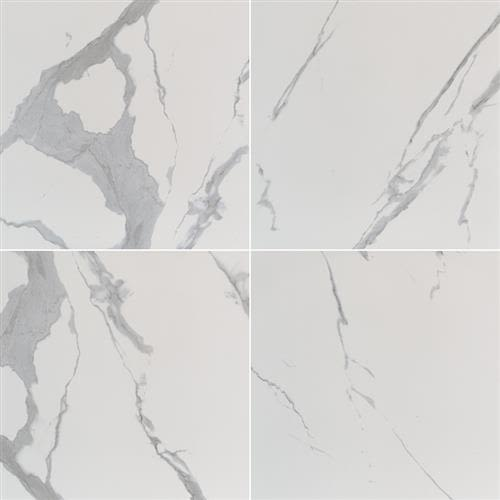 Swatch for Statuary   24x24 Polished flooring product