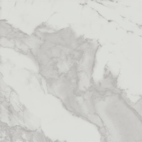 Swatch for Calacatta   12x24 flooring product
